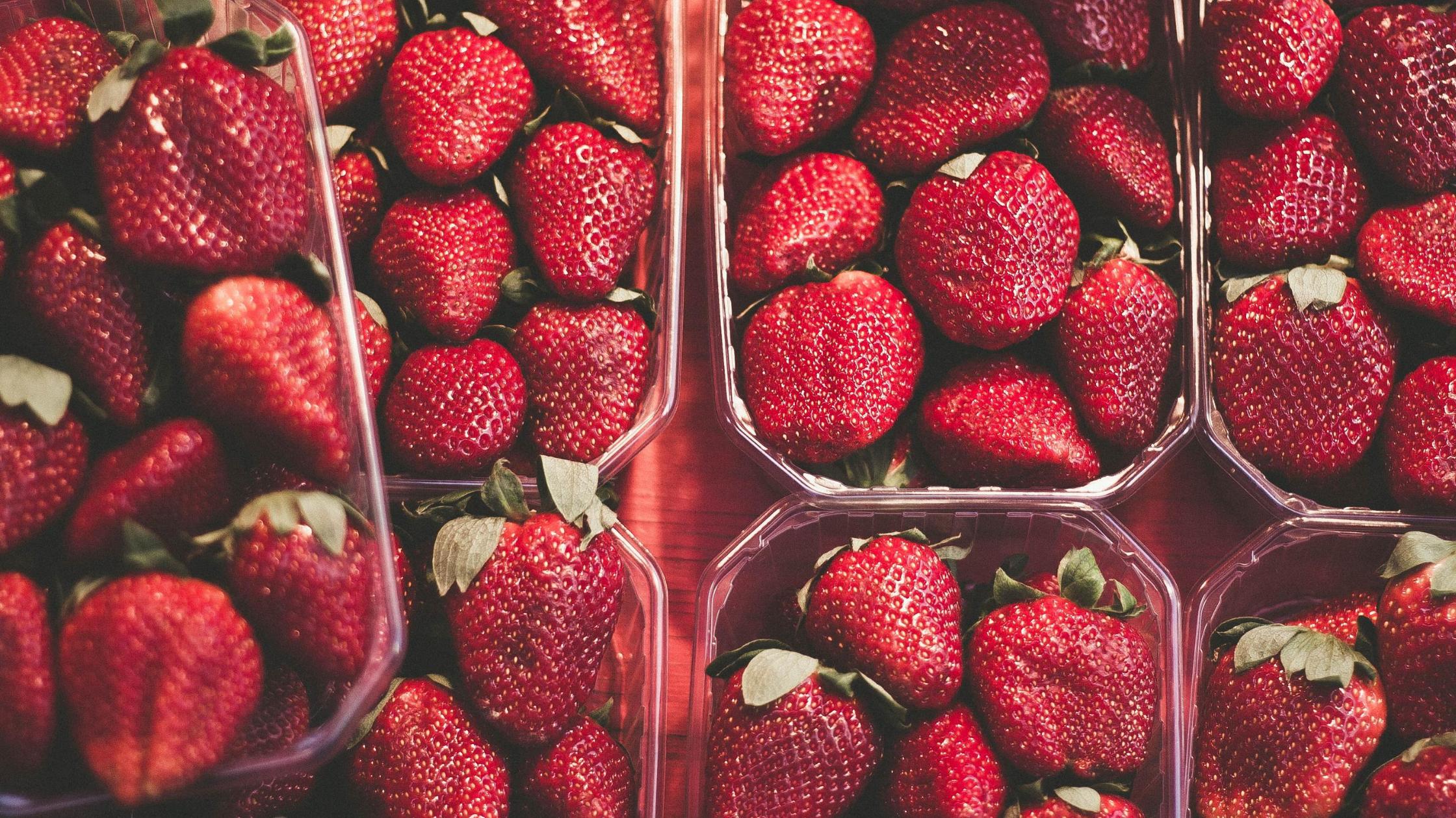 Cómo aumentar el rendimiento de las frutillas en un 14%
