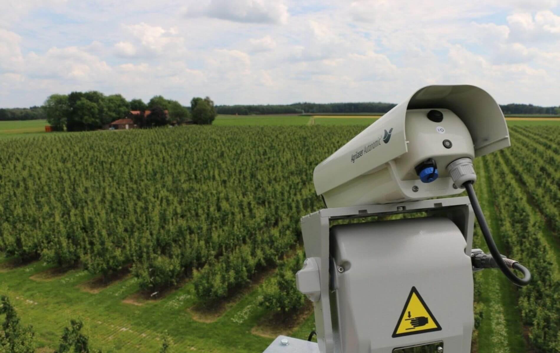 3 beneficios del control de aves con sistema láser en la agricultura
