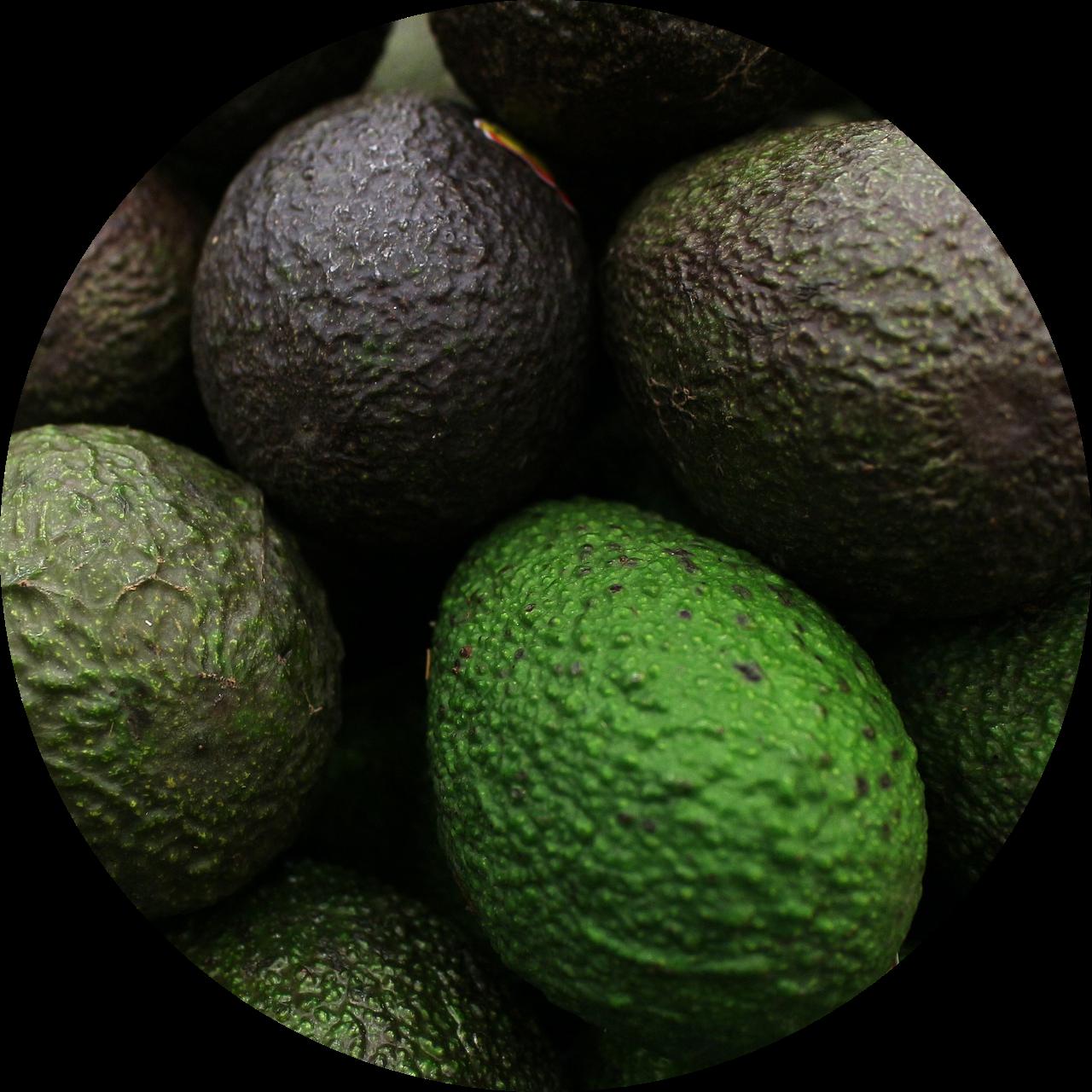 circle-cropped (5)